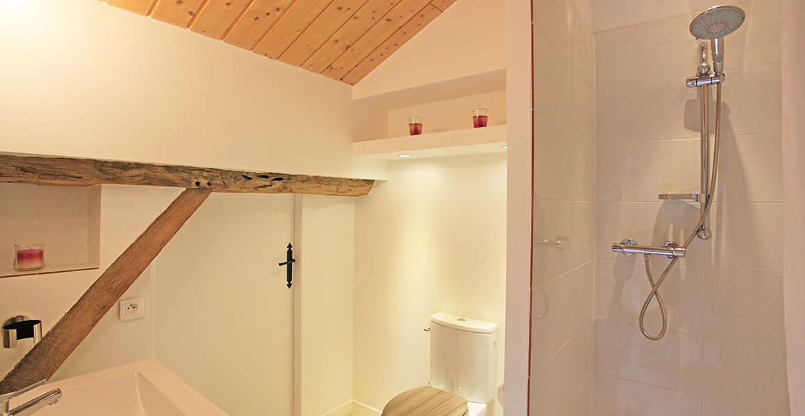 Barn en suite shower room and WC
